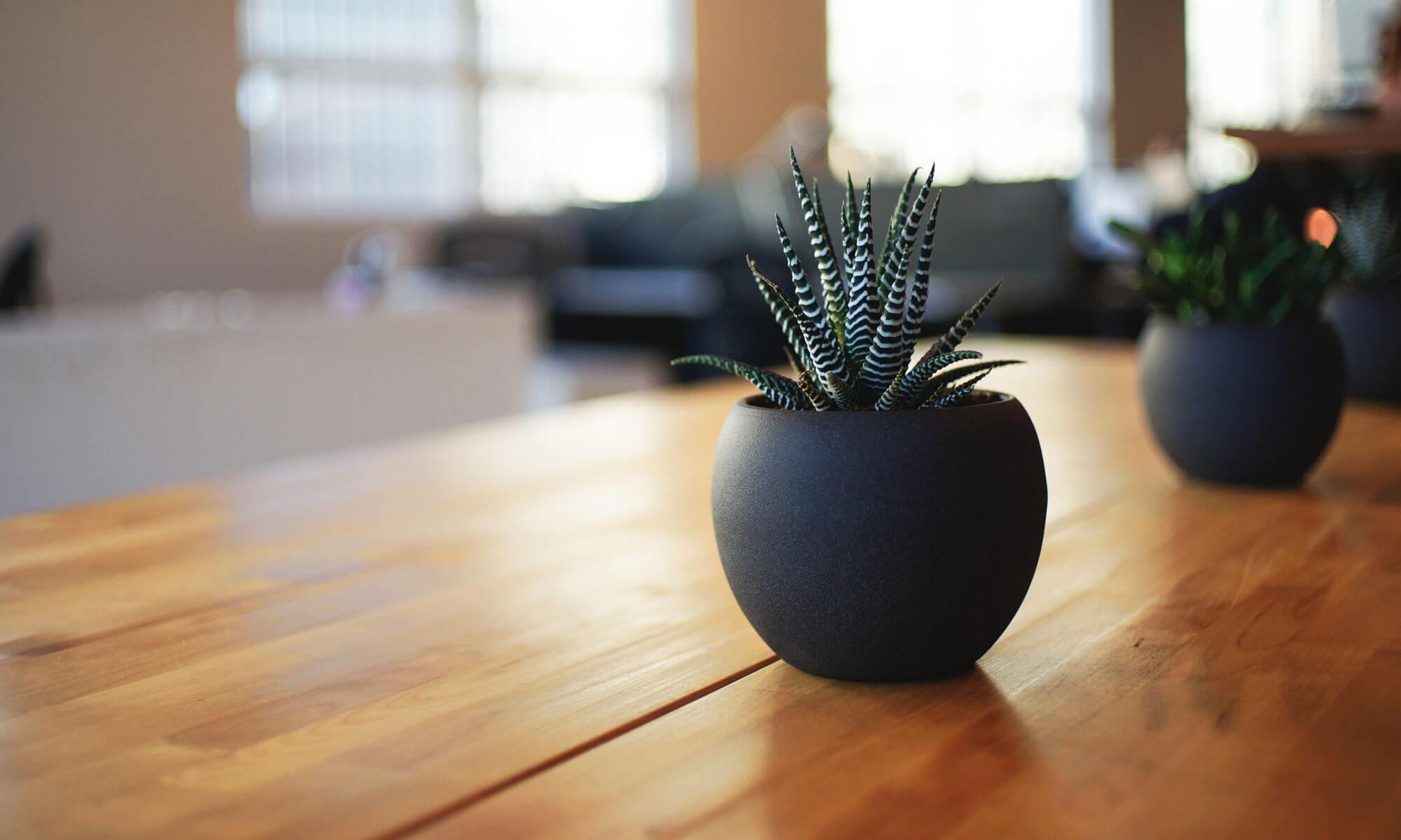 オフィスアイラーニング~ブログ、ホームページ作成