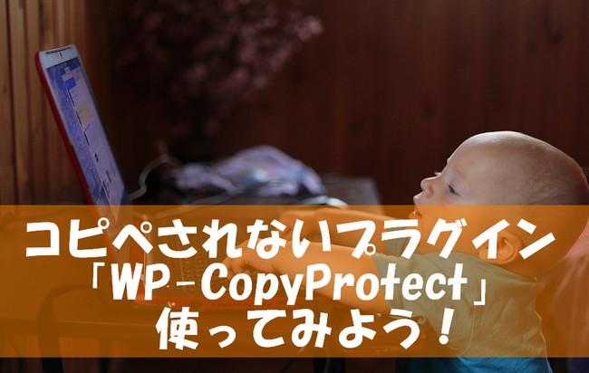 コピペされないプラグイン「WP Copy Protect」を使ってみよう!~コピペと引用のルールは?
